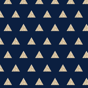gold sparkle v. I triangles on navy