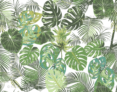 monstera and other tropical leaves