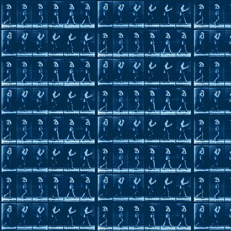 Muybridge Rake (indigo) fabric by dscougar on Spoonflower - custom fabric