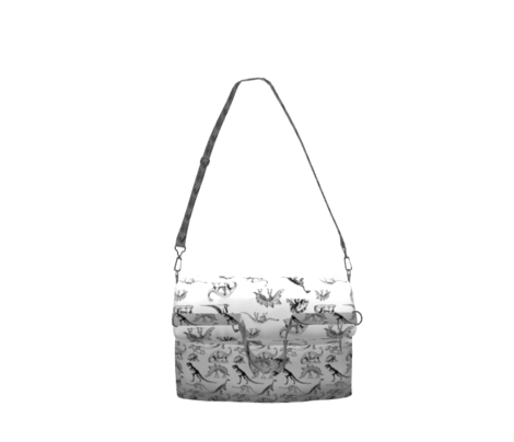 Museum Animals, Dinosaur Skeletons, Black and White Dino