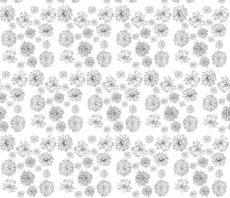 flower fields ~ black and white by Jane LaFazio fabric by jane_lafazio on Spoonflower - custom fabric