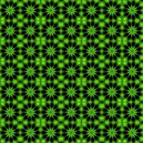 Lime Star Burst