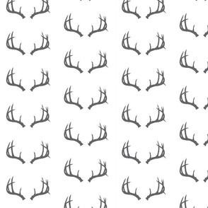 Deer Antlers in Gray (Half Scale)