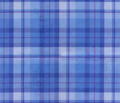 R14_blue_plaid_med_comment_441704_thumb
