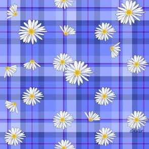 Daisy Plaid Blues