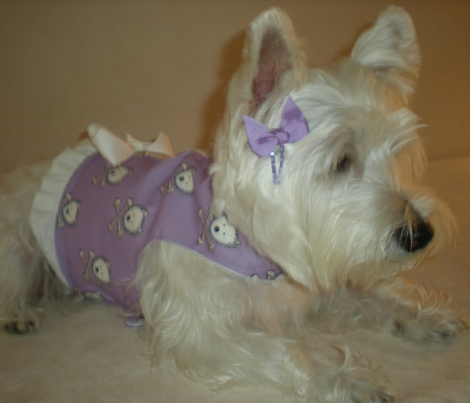 Rrr14_torrid_westies_purple_comment_452227_preview
