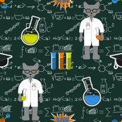 Rrrprofessor_cat_formulae_shop_thumb