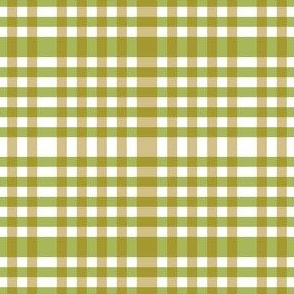 Green and gold gingham.