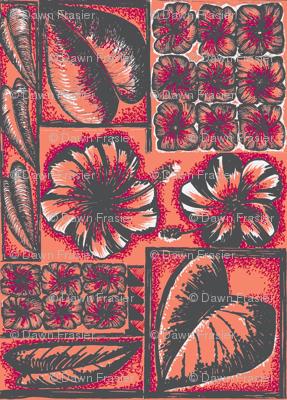 Flora Pacifica  pink hibiscus