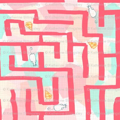 Science Fair Mouse Maze