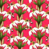 Lily_damask_3_shop_thumb