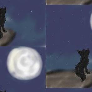 At_Night
