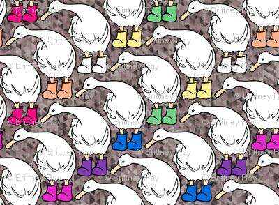 Ducks in the Mud