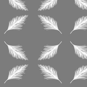Pine - Gull Reverse
