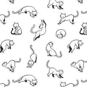 Kitties - Black on white