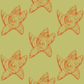 starfish starburst