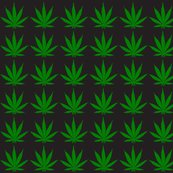 Rrrr2-467_pot_leaf_shop_thumb