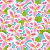 Rrrrrlilies-01_shop_thumb