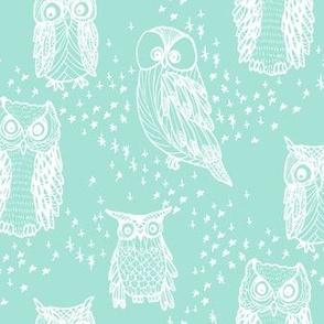 Little Owl in Aqua