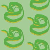 Sleepy Snakes