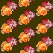 Roses, diagonal on green