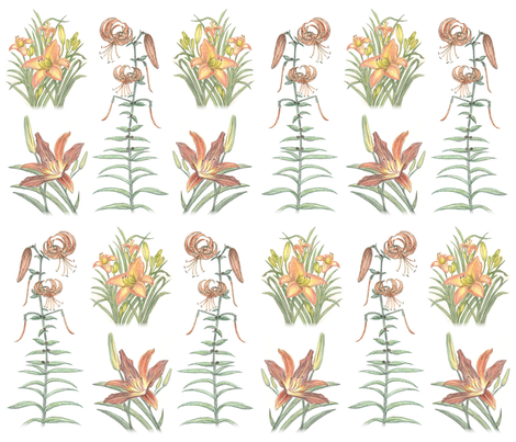 ColleensLilliesSpoonflower fabric by colleen_currans_bush on Spoonflower - custom fabric