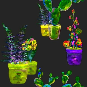 GARDENING NIGHT GLOW lime purple yellow fern cactus flowers