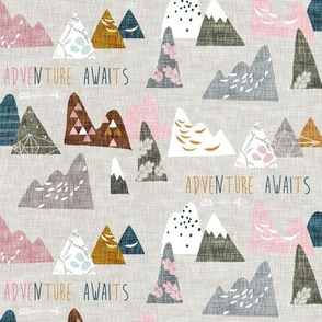 Adventure Awaits (pink) SMALL