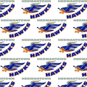 HermantownHockeyFabric