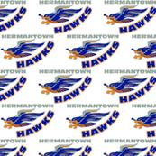 HermantownHockeyFabric