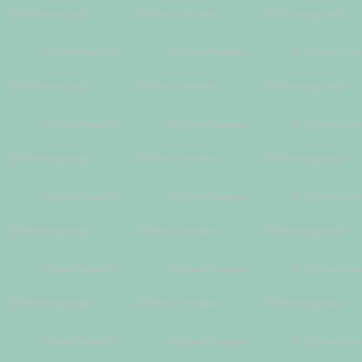 solid light greyed aqua (9DC9BA)