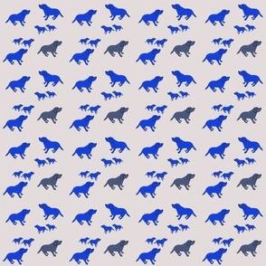 110__puppies_blues05