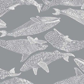 Whales in Gray