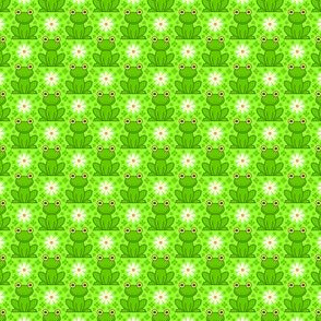 field of frogs