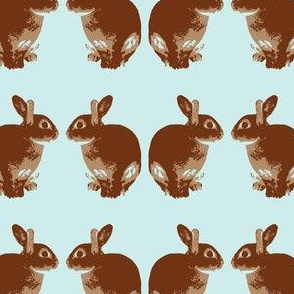 vintage style bunny reflections