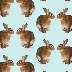 bunny reflections lt aqua background-ch