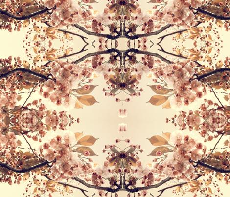 flowers shabby fabric by cynetik on Spoonflower - custom fabric
