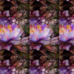 158-7L-Bb15x25Water Lilies