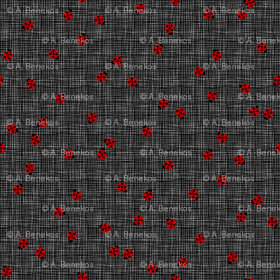 Ladybugs (Gray Background)