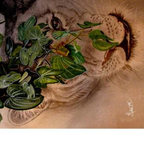 Lioness Peering through Mopani Tree leaves.