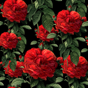Redoute' Roses ~ Riot of Red ~ Blackmail
