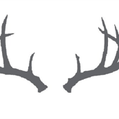 Deer Antlers in Gray Mini