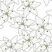 Rrrkindvall-lilies-8x8-updated_shop_thumb