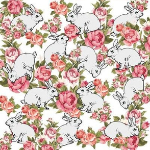 rabbit rose garden