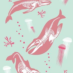 Baleen Whale Skeletons / blue