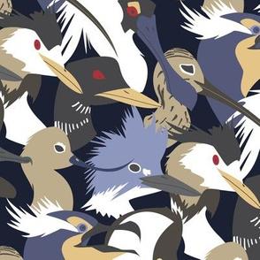 Waterbirds Graphic