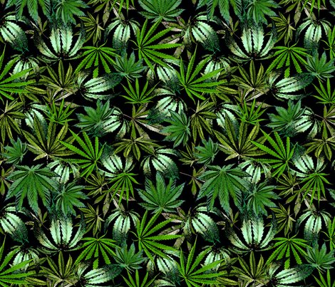 Rrrpaintedcannabisleaves4spf_shop_preview