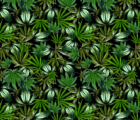 Painted Cannabis Leaves fabric by camomoto on Spoonflower - custom fabric