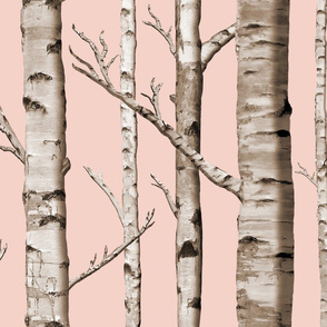 Birch Grove in Blush