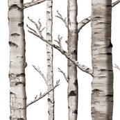 Rrstraightmatchbirch_shop_thumb